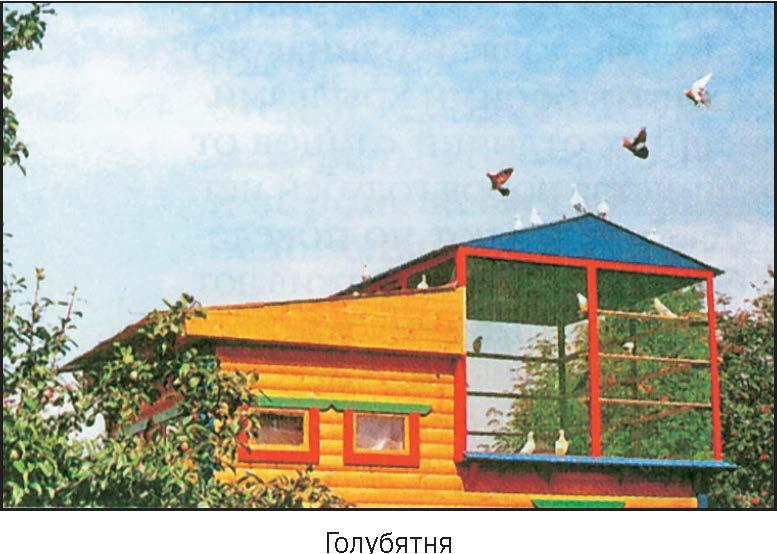 Толковый Словарь старинных слов и выражений русского языка
